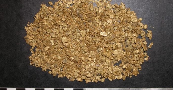 Якутянин пытался провезти вПриамурье золотые слитки на8 млн. руб.