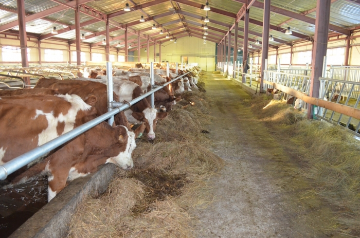 Руководство РФувеличило субсидии для развития агропромышленного комплекса